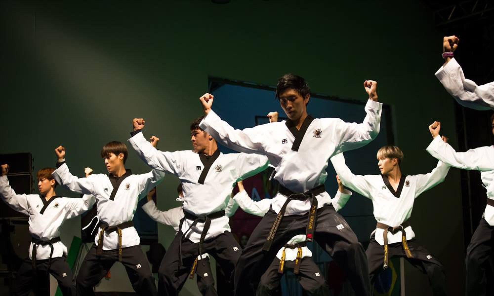 Taekwondo VfL